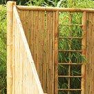 Sichtschutz Bambus
