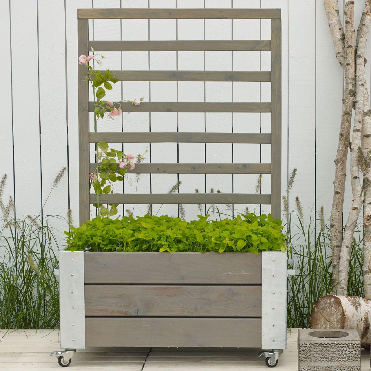 Mobiler sichtschutz im garten - Gartengestaltung trennwande ...
