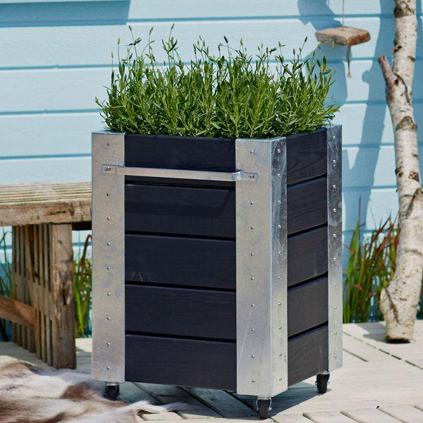 mobiler blumenkasten cubic m quadrat h 70 cm sichtschutz. Black Bedroom Furniture Sets. Home Design Ideas