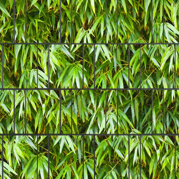 Sichtschutzstreifen bedruckt, Motiv Bambus